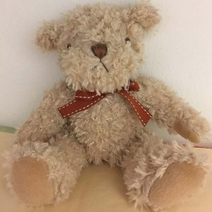 Bramble Bear - All About Flowers Online Ordering